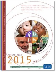 fiscal year cover